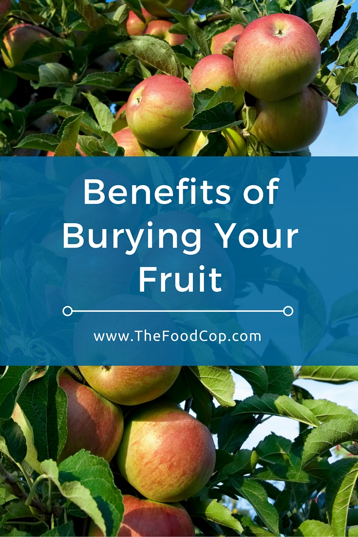 Benefits of Burying Your Fruit. Click through to read more.