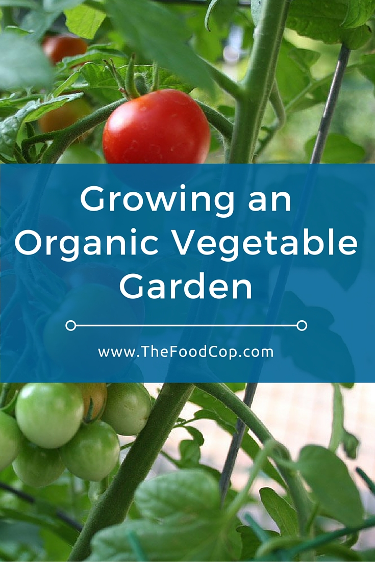 organic garden | organic vegetable garden | vegetable garden | lasagna gardening | The Food Cop