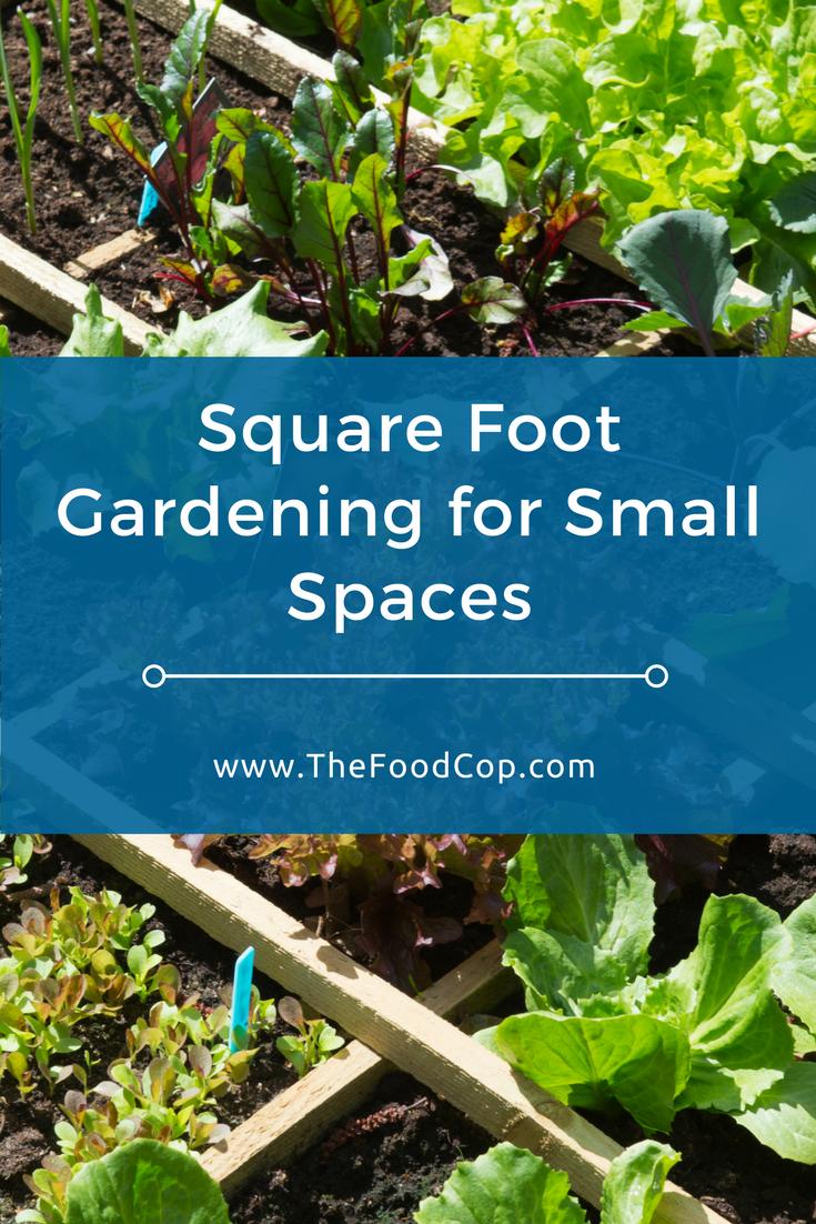 square foot gardening | gardening | fruit and vegetable garden