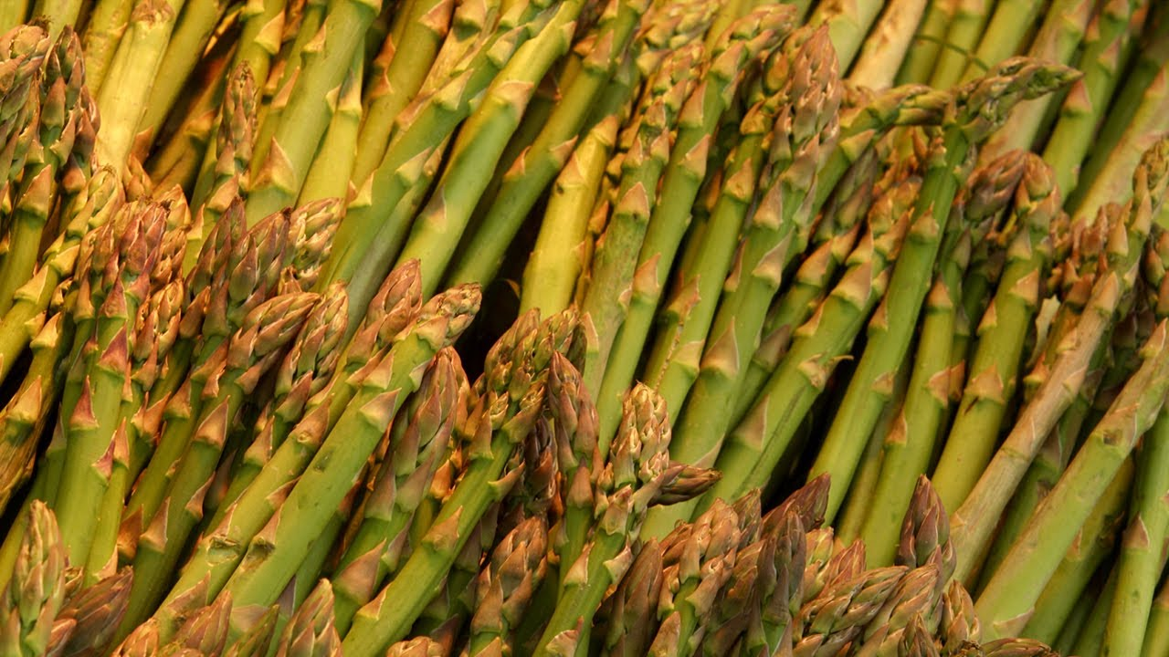 Tips For Growing Asparagus Successfully The Food Cop